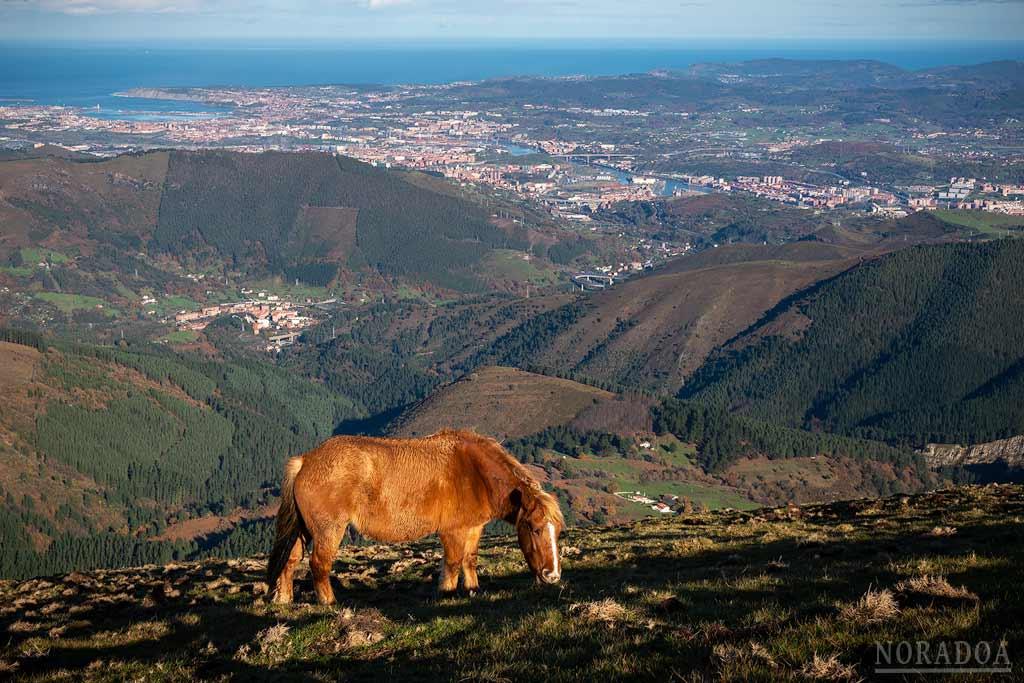 Vistas desde el monte Ganekogorta