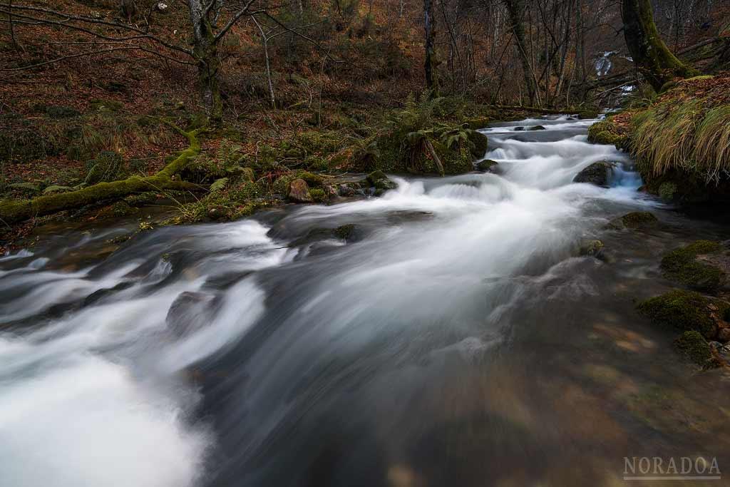 Nacedero del río Zirauntza en otoño